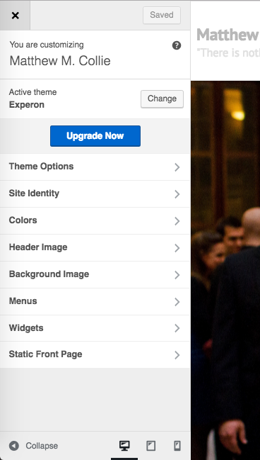 An example of a WordPress customize sidebar from the Experon theme.