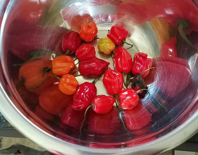 Picture of small red, yellow and orange peppers in a round metal bowl.