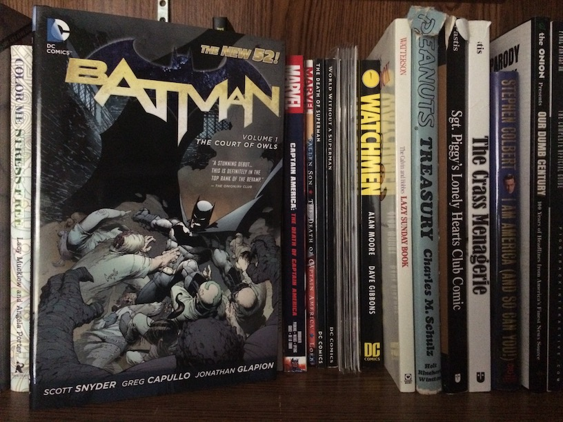 Photo of the book Batman: The Court of Owls by Scott Snyder on a bookshelf.