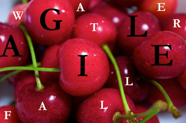 Photo of red cherries with letters spelling out AGILE in black and WATERFALL in white written on the cherries to illustrate the adopting Agile misconceptions mistake of cherry-picking.